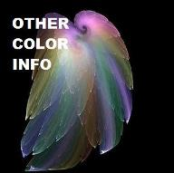 Other Color Information