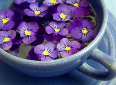 Violets in a Cup of Tea