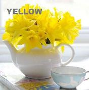 The color yellow and its attributes
